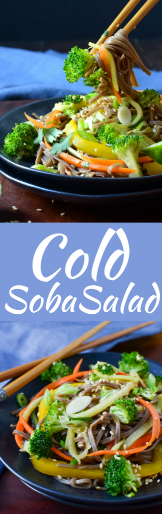 The best recipe for a hot day is this easy Cold Soba Salad with thinly sliced vegetables and an Asian-dressing that will fill you up & cool you off!