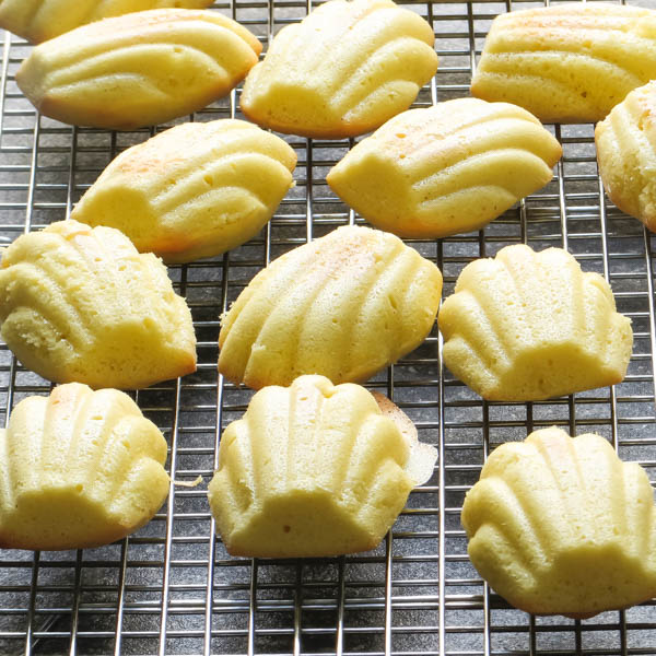 cooling Coconut Madeleines