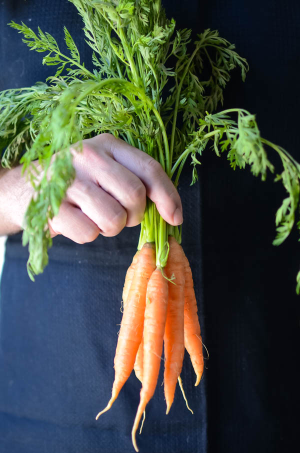 carrots with stems