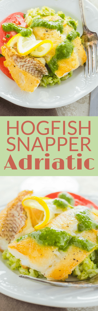 Want to know how to cook snapper? This easy Hogfish Adriatic is a quick pan saute with a fresh herb sauce. Great over rice. One of the best snapper fish recipes. If you don't have hog snapper, use yellowtail, red snapper or mangrove snapper. #snapper #snapperrecipes #seafood #howtocookfish #howtocooksnapper #floridasnapper #floridakeysfish #easyfishrecipe #fishrecipe #healthyfishrecipe #healthyfish #pescatarian