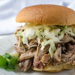 Carolina Pulled Pork | Garlic + Zest