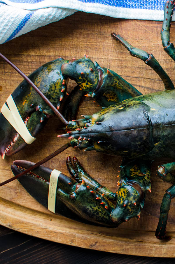 live lobster on a cutting board.