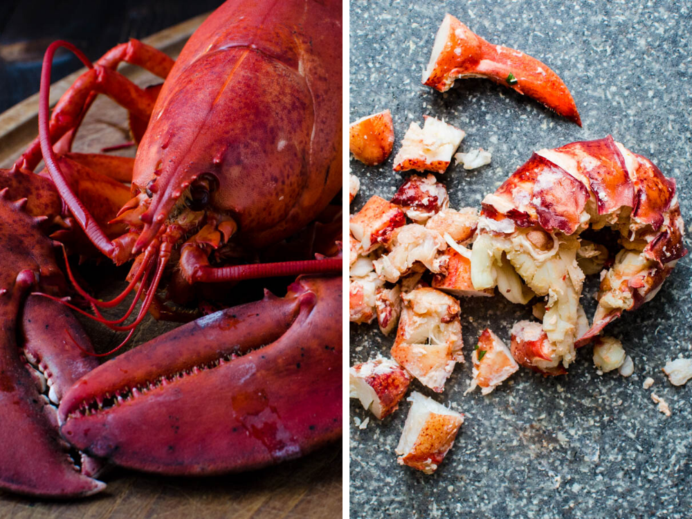 cooked lobster meat from a steamed lobster. Use the shells for homemade seafood stock for the lobster béchamel.