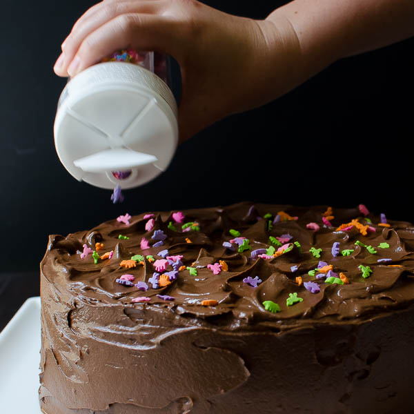 Double Chocolate Layer Cake | Garlic & Zest
