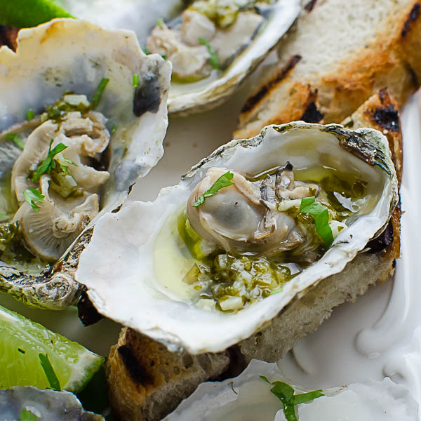 grilled oysters with key lime herbed butter