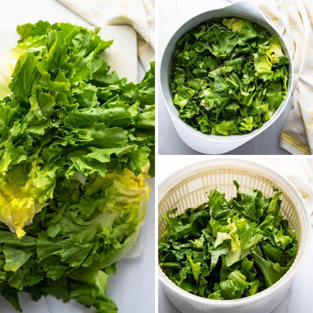 cleaning and drying the escarole lettuce.