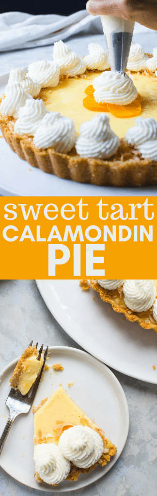 If you're fortunate enough to have a calamondin tree, then you need calamondin orange recipes. This Sweet Tart Calamondin Pie recipe is a cross between key lime and creamsicle pie and a fun way to use the excess fruit from your calamondin orange tree. #calamondin #calamondinorange #orangetart #orangepie #calamondinorangerecipe #bakedorangepie #evaporatedmilk #stabilizedwhippedcreamrecipe #howtostabilizewhippedcream #whippedcream #fancytartrecipe #easytartrecipe #keylimepierecipe
