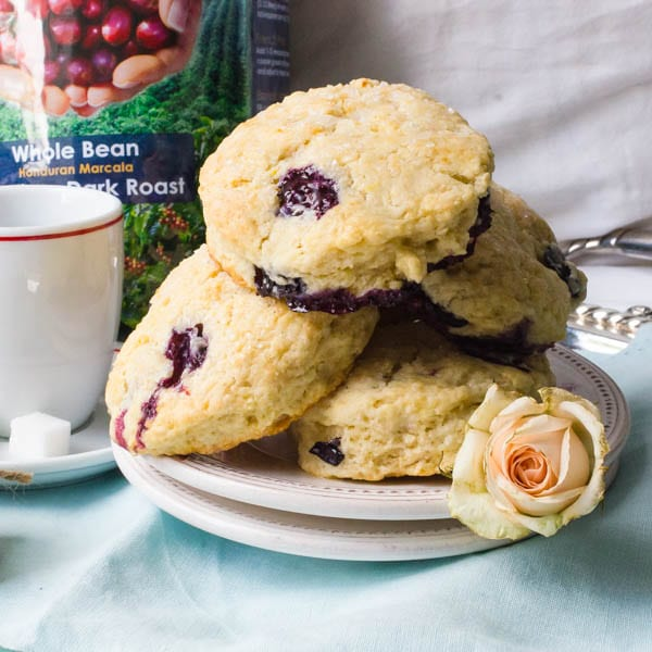 Cafe-Style Blueberry Cream Cheese Scones