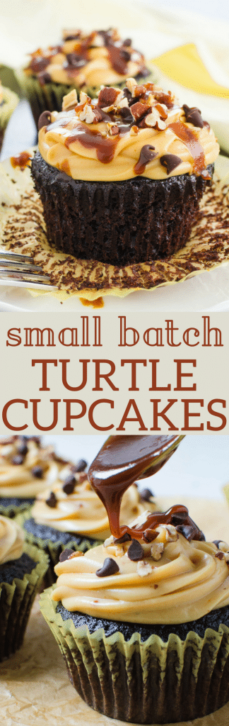 These small batch cupcakes are worth the effort, with Caramel Cream Cheese Frosting, chopped pecans, mini chips and caramel drizzle, these turtle cupcakes are great for small celebrations. Small batch turtle cupcakes recipe can be doubled or quadrupled to celebrate with a crowd, too! #cupcakes #smallbatch #smallbatchcupcakes #chocolatecupcakes #chocolate #caramel #pecans #caramelfrosting #creamcheesefrosting #turtlecake #turtlecupcake #chocolatecake #homemadecupcakes