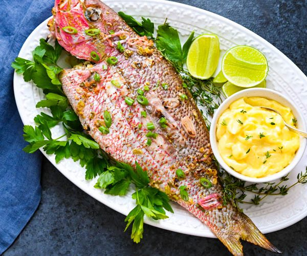 Caribbean Grilled Yellowtail Snapper Recipe with Easy Aioli