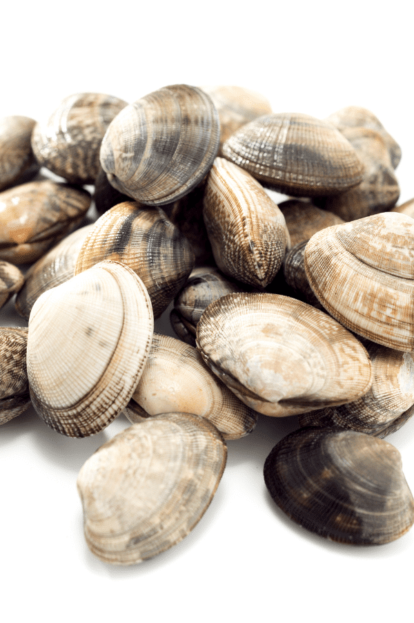 clams and other seafood options are a good bet for transforming jarred pasta sauce into a homemade fruits de mer.